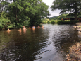 Teign Swim after the Strawberry Breakfast